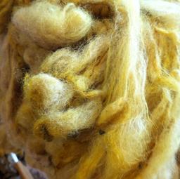 Onion skin dyeing